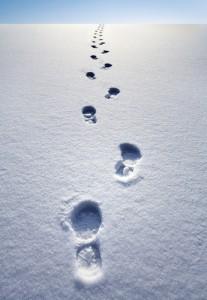footprintssnow